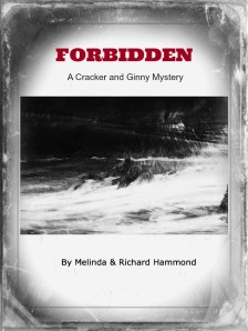 Forbidden Cover Design 5